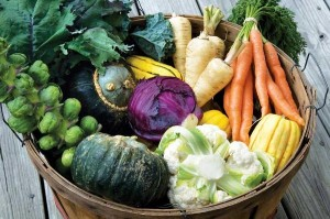 Fall Vegetables